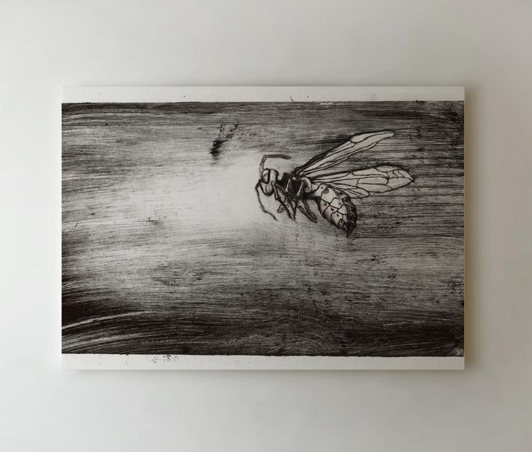 wasp - etching, graphic, art, fineart - zizilka | ello