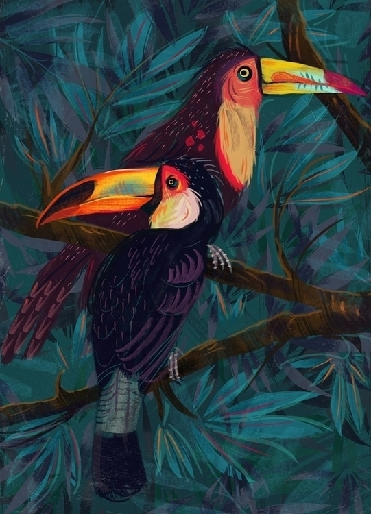 Toucans - illustration, animals - malgorzatadetner | ello