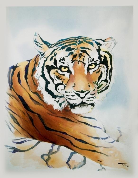 Marc. Male Bengala Tiger - illustration - isabelbarbaart | ello