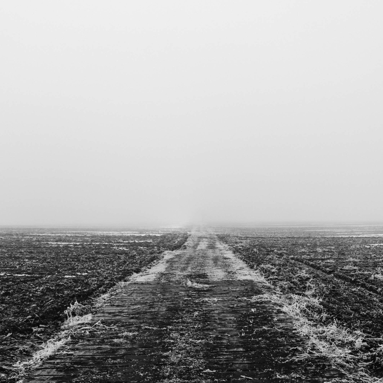 name_6 - hoarfrost, frost, road - deckard-1398 | ello