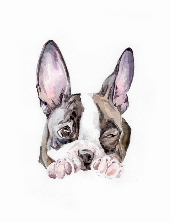 Love watercolor boston terrier  - wanderinglaur | ello