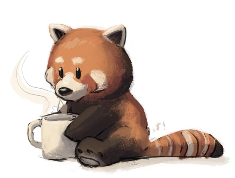 Red Panda Drinking Coffee - Redpanda - ryannotbrian | ello