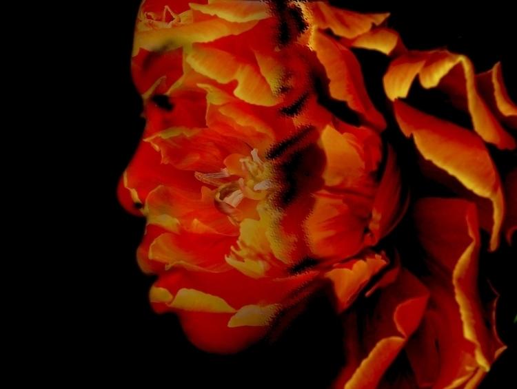 interreflection 2 - photography - cylindergallery | ello