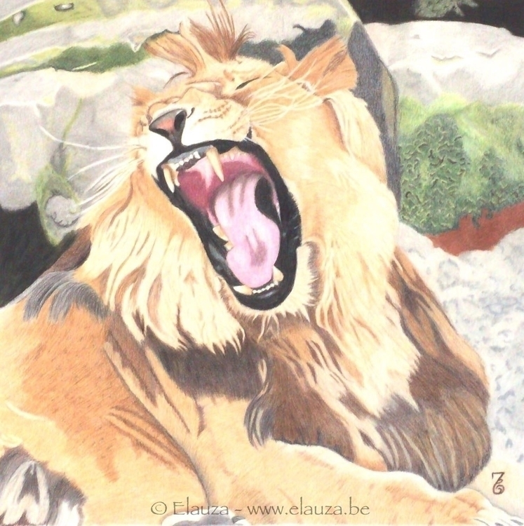 King roars Polychromos colored  - elauza | ello