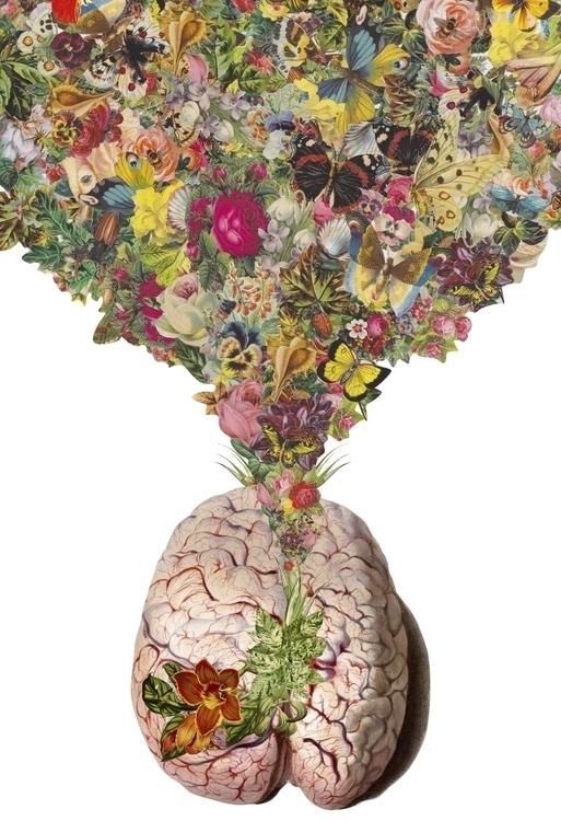 open expand anatomical collage  - bedelgeuse   ello