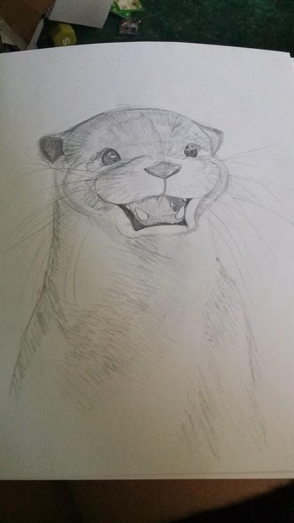 Otters friends - littleduffer20   ello