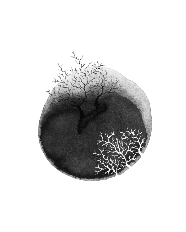 ink, blackandwhite, veins, branch - caitiluke | ello