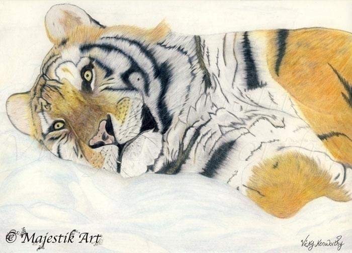 Serenity - Tiger, BigCat, Animal - majestikart | ello