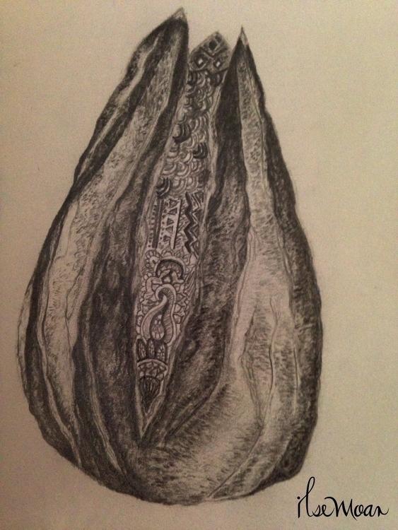 SUNFLOWER SEED PATTERN - illustration - ilsemoar | ello