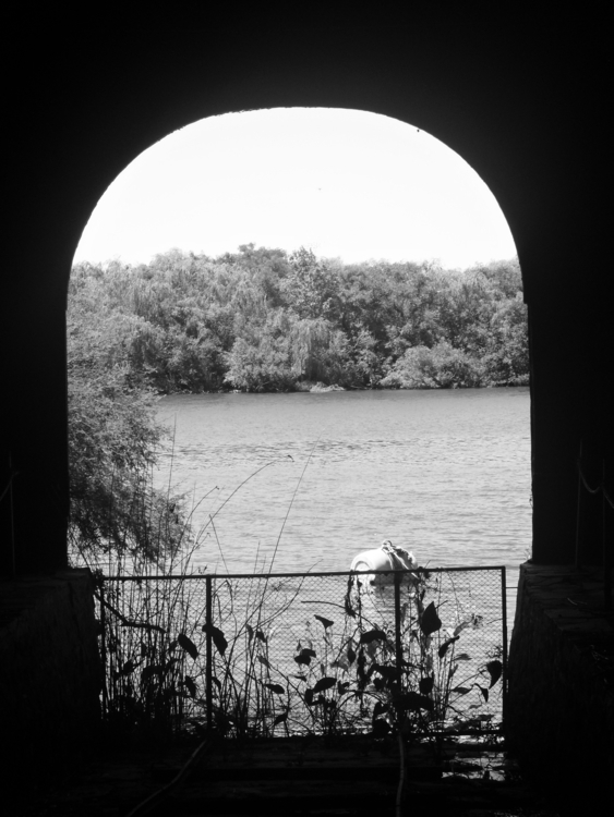 window soul - photography, blackandwhite - simulacrummedia | ello
