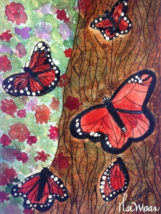 MONARCH BUTTERFLIES - illustration - ilsemoar | ello