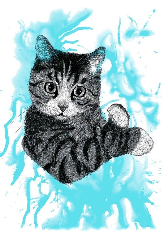 Kitty - Blue - illustration, drawing - cristianatorres | ello