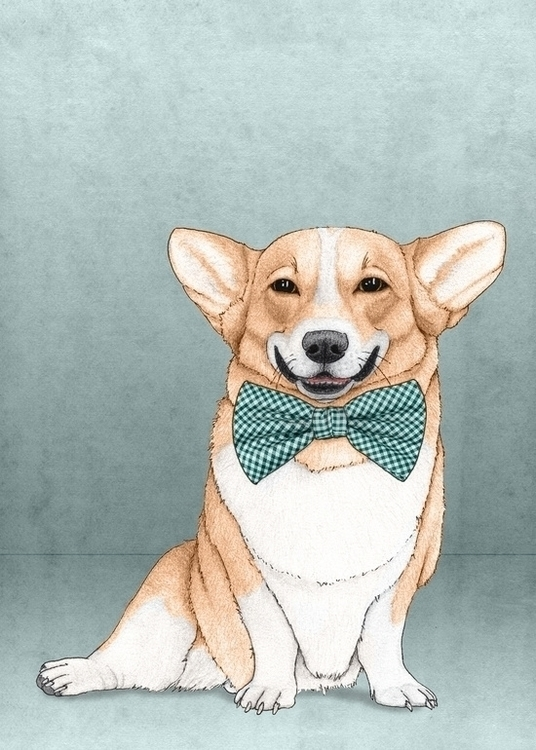 Corgi Dog; Illustration Barruf - barruf | ello