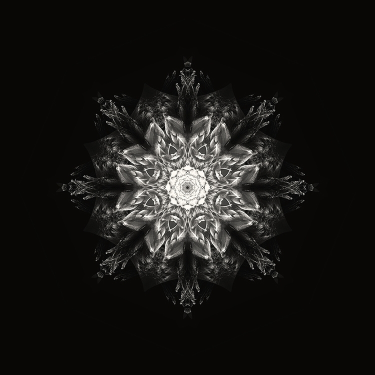 Mandala black - design, illustration - joratotus | ello