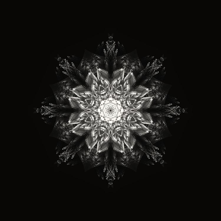 Mandala black - design, illustration - joratotus   ello