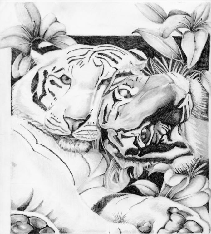 tigers - drawing - tracieclaflinbryant   ello
