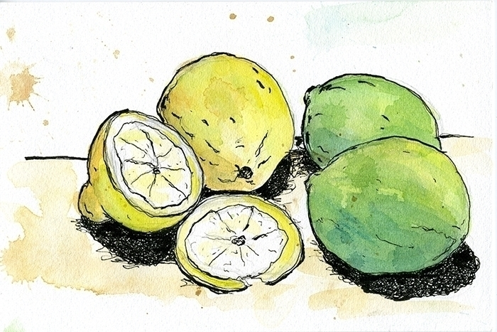Lemons Limes - drawing, penink, illustration - gtnelson | ello