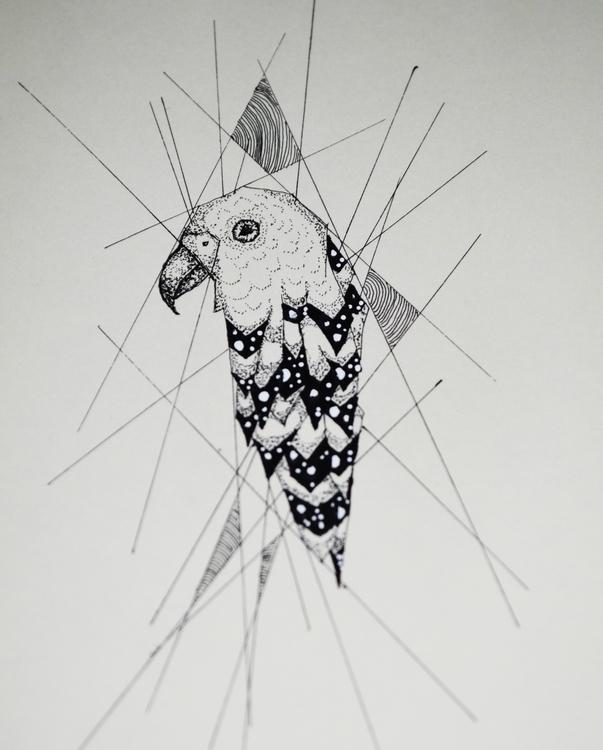 Parrot - illustration, parrot, bird - kimwilgin   ello