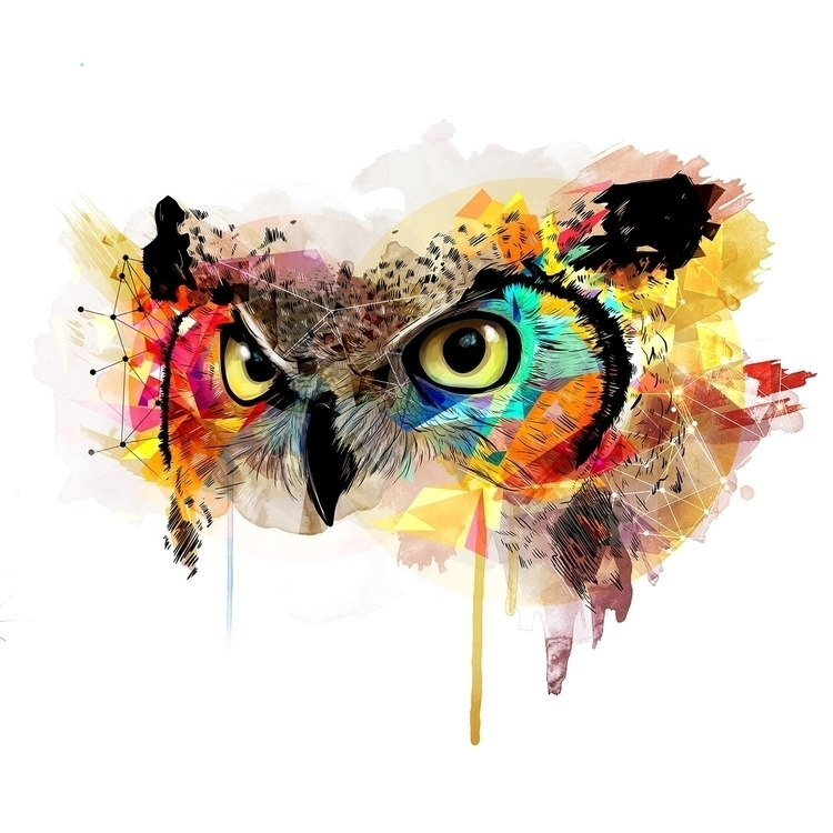 Animal Owl - owl, animal, color - adas_illustration | ello