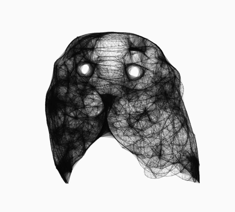 Seal (portrait - animal - siguni | ello