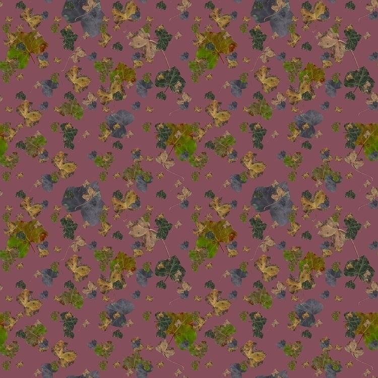 leaf coordinate - marysheaffer | ello