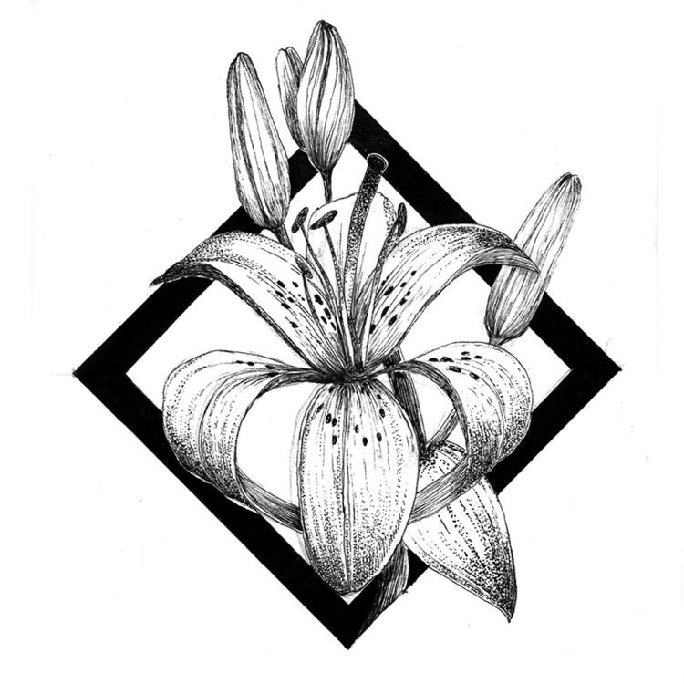 Lilies - illustration, drawing, #flowers - karolina-4327 | ello