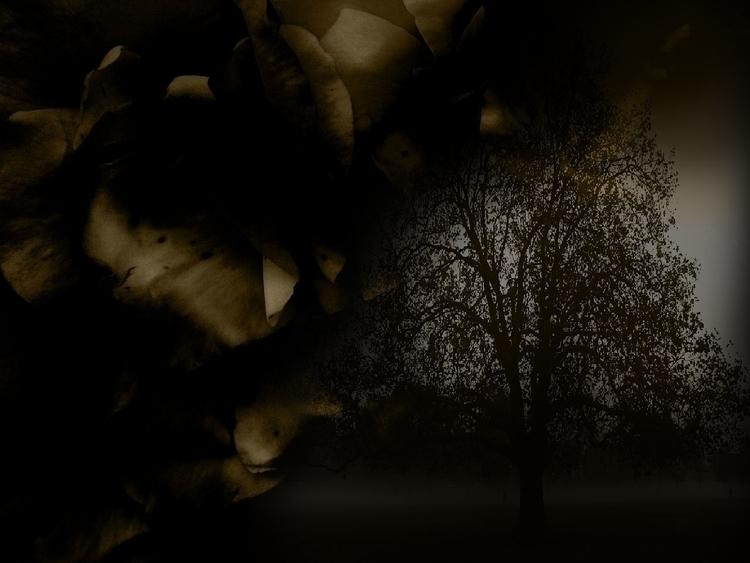 fog  - landscapes, art, fineart - cylindergallery | ello
