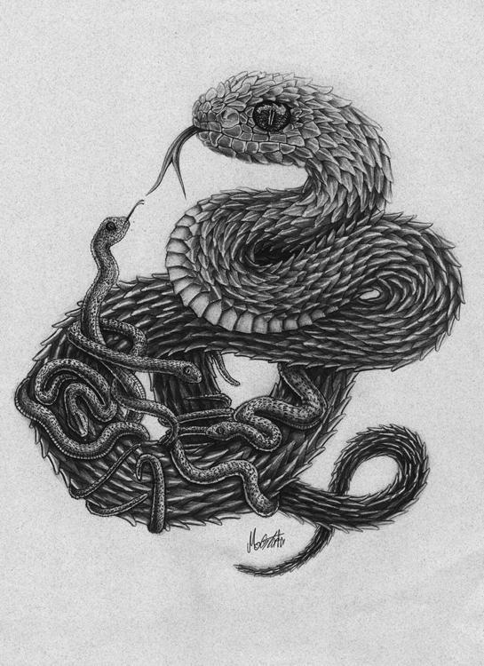 Atheris Squamigera series illus - mostafa-1012 | ello