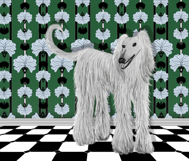 Afghan Hound art deco wallpaper - elizabethboylan | ello
