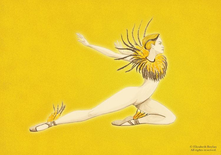 Gold Finch inspired dancer - illustration - elizabethboylan | ello