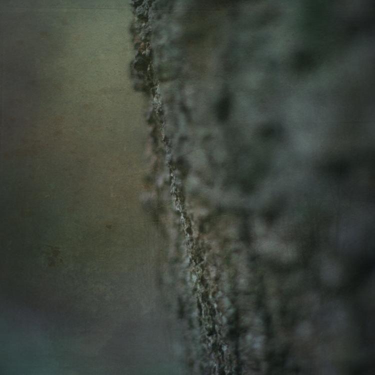 photography, texture, environment - vogelina | ello