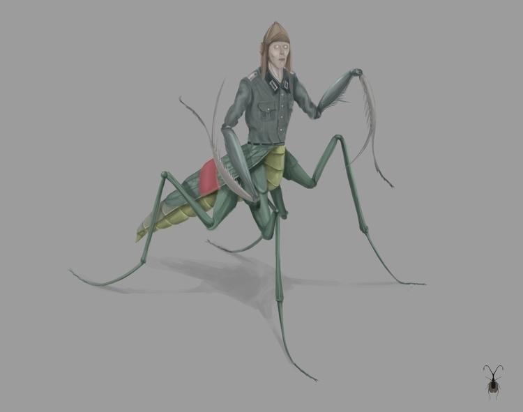 ismaele, mobydick, insect, animal - stetocefalo | ello