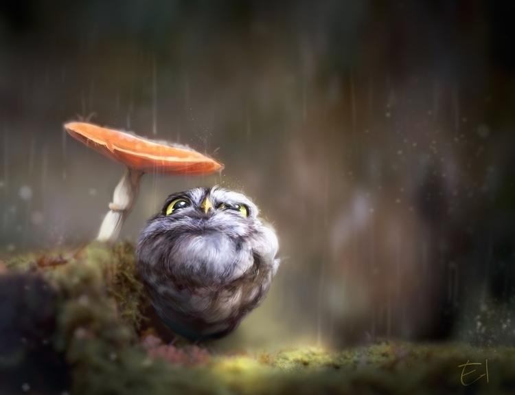 owl, rain, illustration, digitalart - el0394 | ello