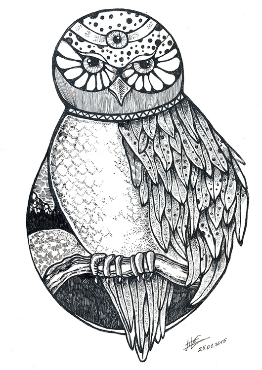 Owl Totem - owl, owls, feather, wings - litae   ello