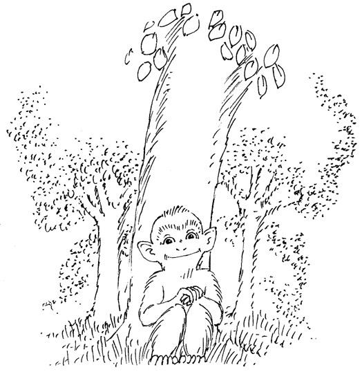 Trent baby forest - #illustration - dannybriggs | ello