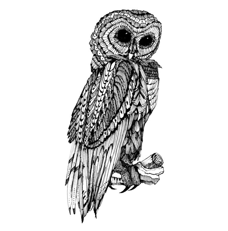 Owl 2007 - owl, bird, penandink - amyconsolo | ello