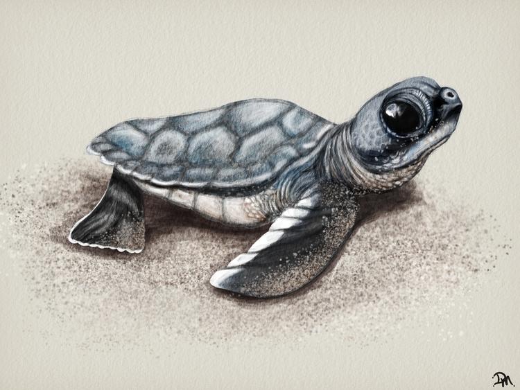 Sea! Sketched SketchClub iPad.  - dmerchen | ello
