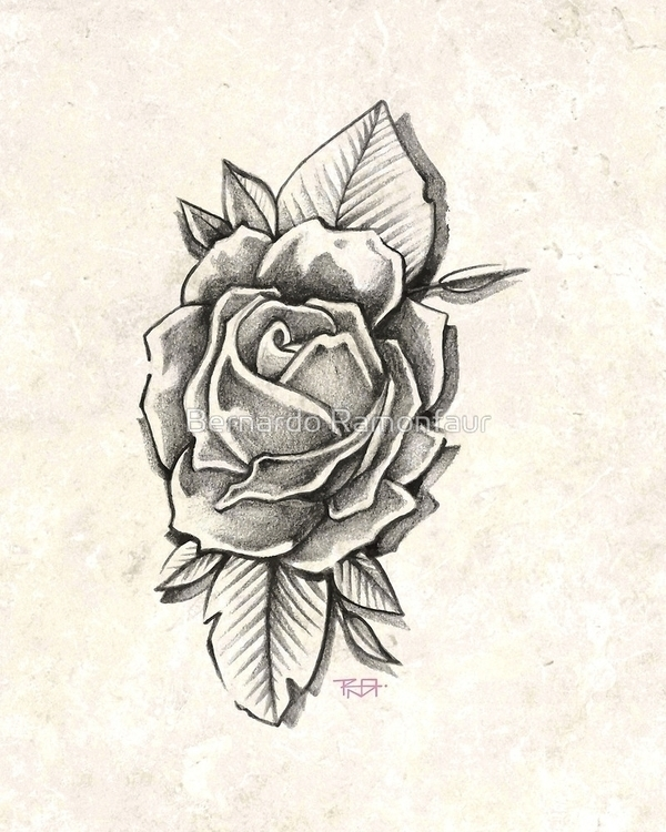 Rose illustration - rose, flower - bernardojbp | ello