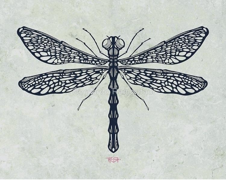 Dragonfly illustration - dragonfly - bernardojbp | ello
