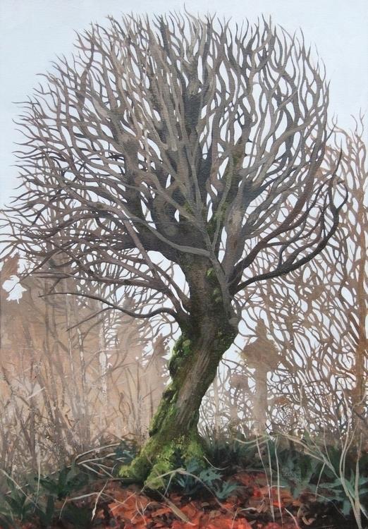 Winter Maple - winter, maple, emilyweeks - emilyweeks | ello