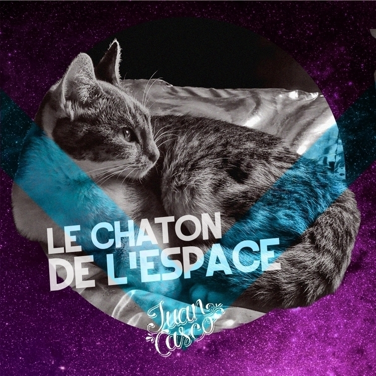 Le Chat - cat, photoshop, space - juancasco | ello