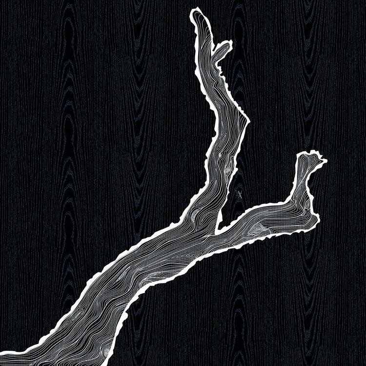 Branch lines - illustration, photoshop - akumimpi   ello