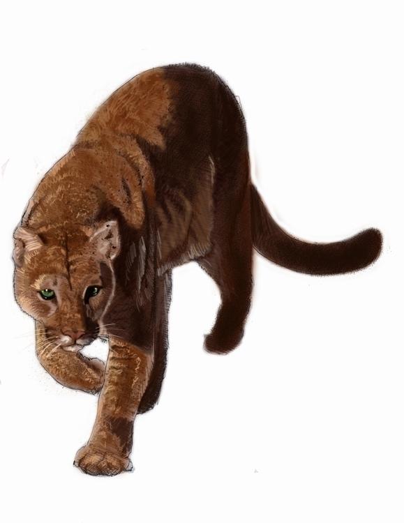 Digital Cougar - artwiz | ello