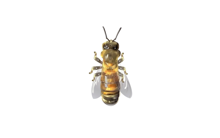 Honey Bee - illustration - madguroo | ello