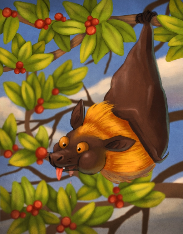 Fruit bat munching berries chil - alexjohnston | ello