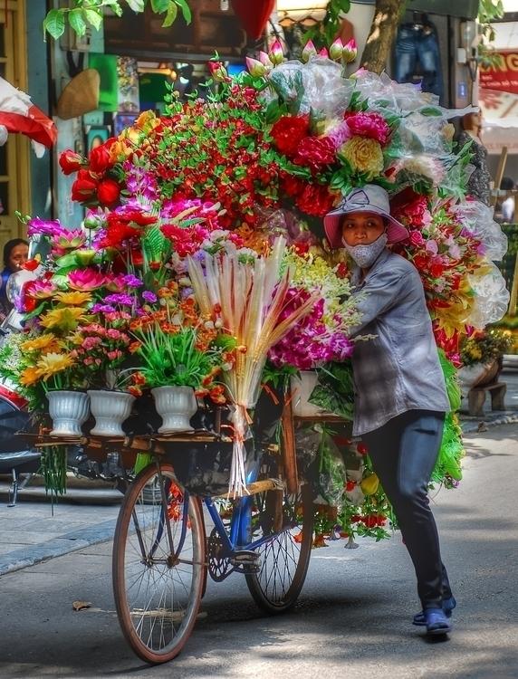 Hanoi Flower Seller - photography - cmvanclevephotography | ello