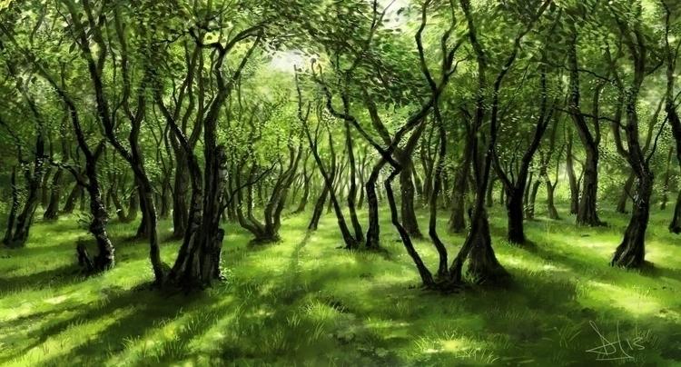 Forest study - colorstudy, lightstudy - daveybaker | ello