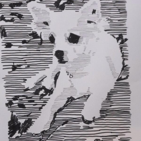 Chihuahua - illustration, dog, dogs - kleckerlabor-5193 | ello