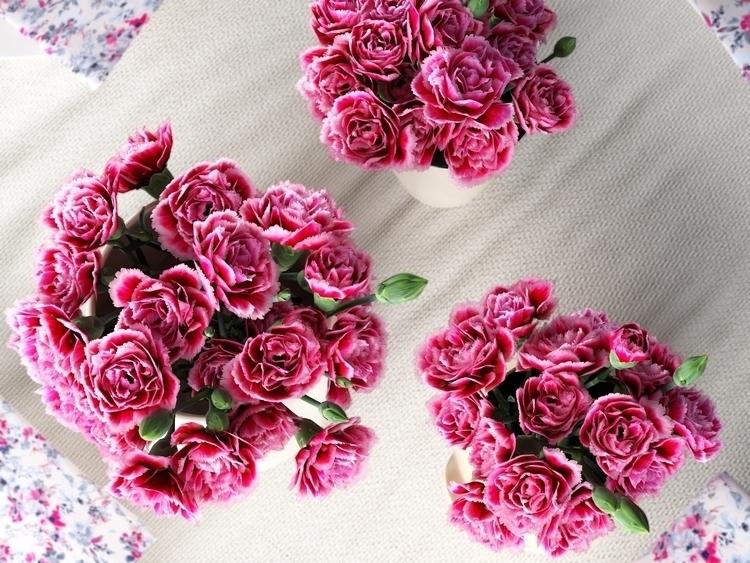 Pink carnations - 3d, flowers, 3dsmax - adidraw | ello