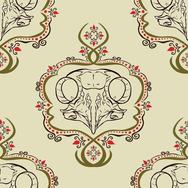 Boreal Owl Skull - borealowl, owlskull - kayla_catherine | ello